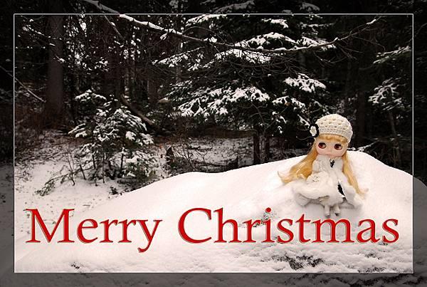 雪淚雪地聖誕卡02.650.jpg