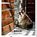 33.晴天小熊-淨園機場咖啡休閒農場-遊走峇里異國風