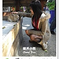 45.晴天小熊-淨園機場咖啡休閒農場-遊走峇里異國風