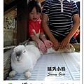 46.晴天小熊-淨園機場咖啡休閒農場-遊走峇里異國風