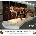 2.晴天小熊-自然科學博物館-從龍到獸,穿越化石代