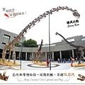 4.晴天小熊-自然科學博物館-從龍到獸,穿越化石代