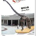 10.晴天小熊-自然科學博物館-從龍到獸,穿越化石代
