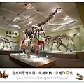 12.晴天小熊-自然科學博物館-從龍到獸,穿越化石代
