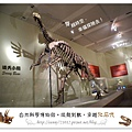 17.晴天小熊-自然科學博物館-從龍到獸,穿越化石代