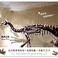 20.晴天小熊-自然科學博物館-從龍到獸,穿越化石代