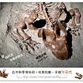 23.晴天小熊-自然科學博物館-從龍到獸,穿越化石代