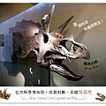 24.晴天小熊-自然科學博物館-從龍到獸,穿越化石代