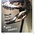 25.晴天小熊-自然科學博物館-從龍到獸,穿越化石代
