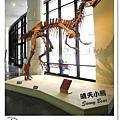26.晴天小熊-自然科學博物館-從龍到獸,穿越化石代