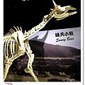 30.晴天小熊-自然科學博物館-從龍到獸,穿越化石代