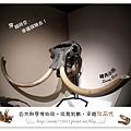 31.晴天小熊-自然科學博物館-從龍到獸,穿越化石代