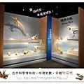 34.晴天小熊-自然科學博物館-從龍到獸,穿越化石代