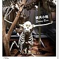 44.晴天小熊-自然科學博物館-從龍到獸,穿越化石代
