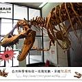 47.晴天小熊-自然科學博物館-從龍到獸,穿越化石代