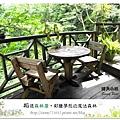 14.晴天小熊-相遇森林屋-彩繪夢想的魔法森林
