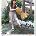 42.晴天小熊-富田花園農場-與泰迪熊來場浪漫的約會
