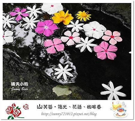 16.晴天小熊-山芙蓉-隱匿山城中的秘密花園