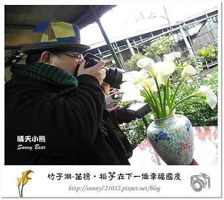 12.晴天小熊-陽明山竹子湖-苗榜-相芋在下一個幸福國度