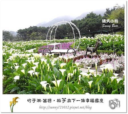 19.晴天小熊-陽明山竹子湖-苗榜-相芋在下一個幸福國度