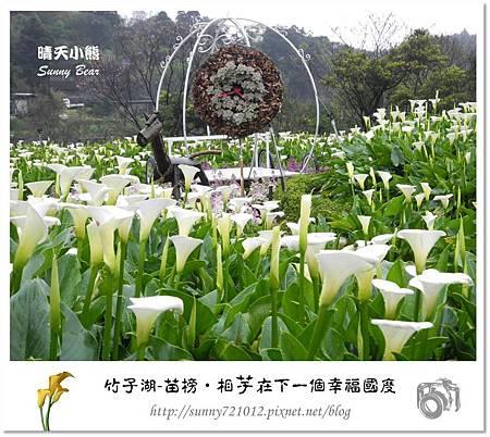 46.晴天小熊-陽明山竹子湖-苗榜-相芋在下一個幸福國度