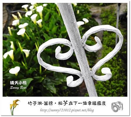 61.晴天小熊-陽明山竹子湖-苗榜-相芋在下一個幸福國度