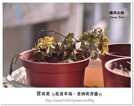 2.晴天小熊-寶藏巖-嚴選幸福,愛情藏寶圖
