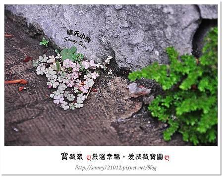 7.晴天小熊-寶藏巖-嚴選幸福,愛情藏寶圖