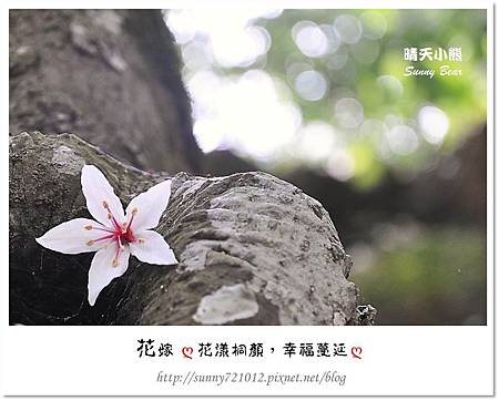 4.晴天小熊-花嫁ღ 花漾桐顏,幸福蔓延 ღ