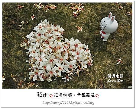 5.晴天小熊-花嫁ღ 花漾桐顏,幸福蔓延 ღ