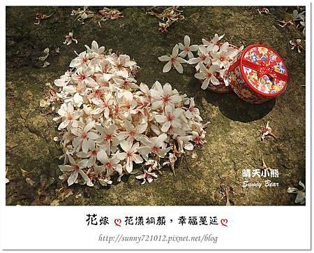 7.晴天小熊-花嫁ღ 花漾桐顏,幸福蔓延 ღ