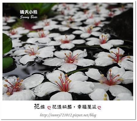 9.晴天小熊-花嫁ღ 花漾桐顏,幸福蔓延 ღ