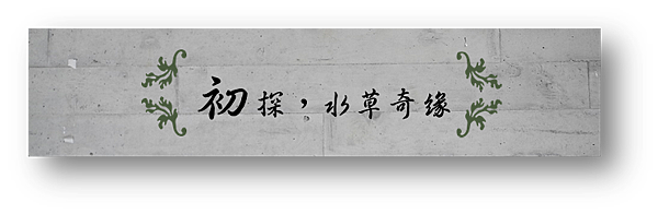 2.晴天小熊-勝洋水草休閒農場-漫步水草王國,獨享愜意時光