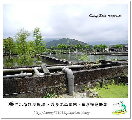 3.晴天小熊-勝洋水草休閒農場-漫步水草王國,獨享愜意時光