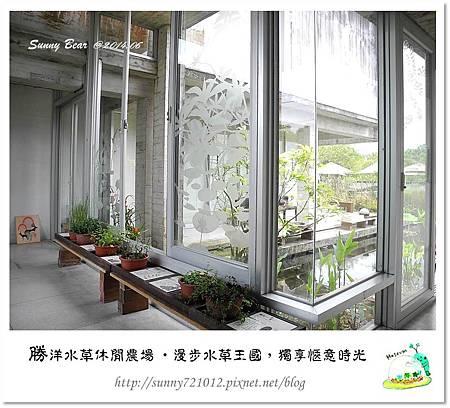 34.晴天小熊-勝洋水草休閒農場-漫步水草王國,獨享愜意時光