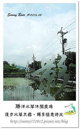 43.晴天小熊-勝洋水草休閒農場-漫步水草王國,獨享愜意時光