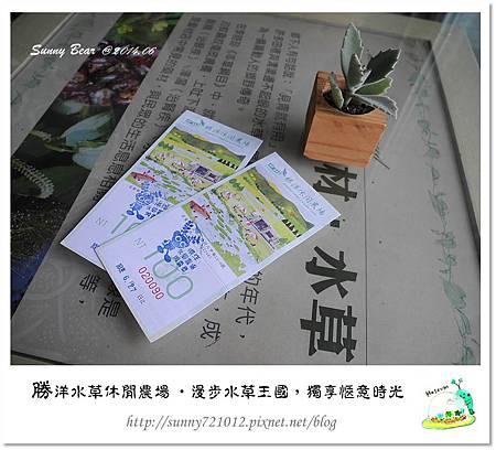 45.晴天小熊-勝洋水草休閒農場-漫步水草王國,獨享愜意時光