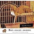 11.晴天小熊-賣捌所-在日式老宅,品味美好時光.jpg