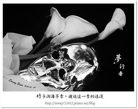 14.晴天小熊-竹子湖海芋季-邂逅這一季的浪漫.jpg