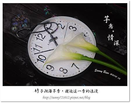 17.晴天小熊-竹子湖海芋季-邂逅這一季的浪漫.jpg