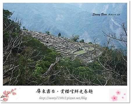 25.晴天小熊-賞櫻嚐鮮走春趣.jpg