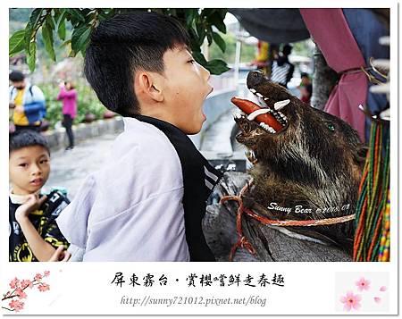 26.晴天小熊-賞櫻嚐鮮走春趣.jpg