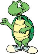 turtle_clipart.jpg
