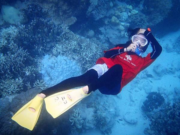 molly潛水攝影.jpg