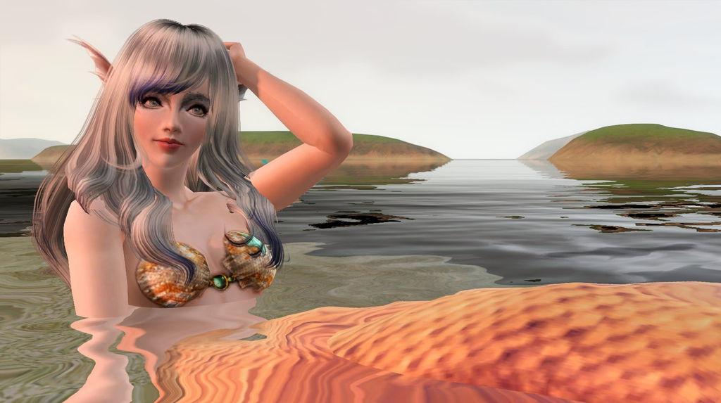 Screenshot-213-1.jpg