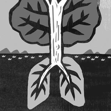 林寶寶的肺.jpg