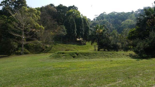 第二層草皮區