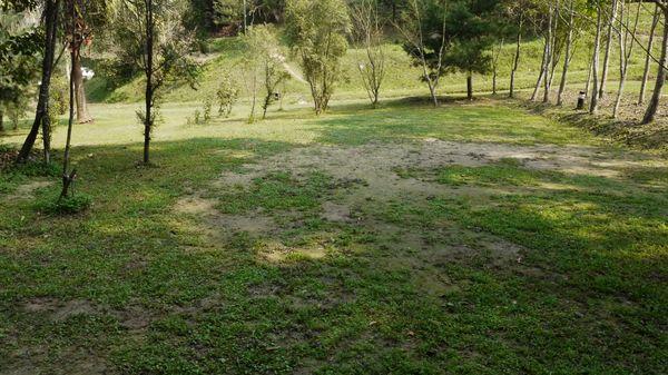 第三層草皮區