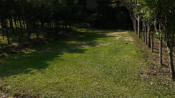 第四層草皮區