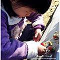 9耀婆山草莓園 (2).JPG